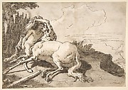 Centaur Embracing a Satyress