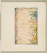 Songs of Innocence and of Experience: On Anothers Sorrow