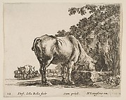 Cow Drinking from a Stone Trough