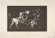 Fools' (or Little Bulls') Folly (Disparate de tontos (or toritos). from the Disparates (Los Proverbios), or The Follies. plate D