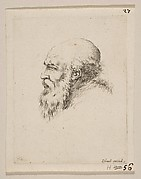Head of a Bald and Bearded Old Man in Profile