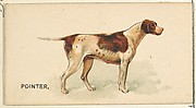 Pointer, from the Dogs of the World series for Old Judge Cigarettes
