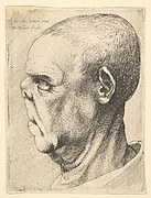 Head of a Man with a Flattened Nose