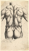 Male Torso , after Leonardo