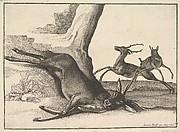 A Dead Stag, anonomous copy