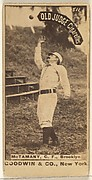 McTamany, Center Field, Brooklyn, from the Old Judge series (N172) for Old Judge Cigarettes