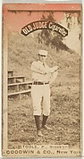 Toole, Pitcher, Brooklyn, from the Old Judge series (N172) for Old Judge Cigarettes