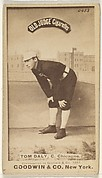 Tom Daly, Catcher, Chicago, from the Old Judge series (N172) for Old Judge Cigarettes