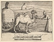 """Two Dromedaries (Aubry de La Mottraye's """"Travels throughout Europe, Asia and into Part of Africa...,""""  London, 1724, plate 314)"""