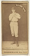 Healey, Pitcher, Indianapolis, from the Old Judge series (N172) for Old Judge Cigarettes
