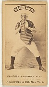 """William """"California"""" Brown, Catcher, New York, from the Old Judge series (N172) for Old Judge Cigarettes"""