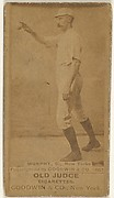 Patrick J. Murphy, Catcher, New York, from the Old Judge series (N172) for Old Judge Cigarettes