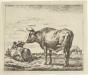 Standing Bull, from Different Animals