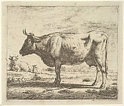 Two Cows and a Sheep, from Different Animals