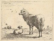 A mature sheep in three-quarters view standing and looking left, beside it a lamb lies on the grass