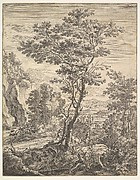 The Large Tree from Upright Italian Landscapes
