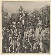 The Triumph of Caesar: the Elephants