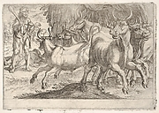 Hercules and the Oxen of Geryones: with a club raised by his right hand, Hercules confronts a group of galloping oxen, from the series 'The Labors of Hercules'