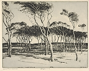 Seaward Pines, Nantucket