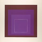 White Line Squares XI (Series I)