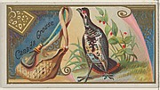 Canada Grouse, from the Game Birds series (N13) for Allen & Ginter Cigarettes Brands