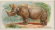 Rhinoceros, from the Quadrupeds series (N21) for Allen & Ginter Cigarettes