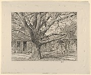 Oak and Old House in Spring