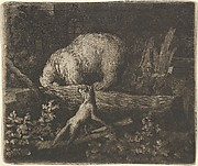 The Bear with His Snout and Forepaws Caught in the Trunk of a Tree from Hendrick van Alcmar's Renard The Fox
