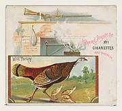 Wild Turkey, from the Game Birds series (N40) for Allen & Ginter Cigarettes