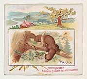 Marten, from Quadrupeds series (N41) for Allen & Ginter Cigarettes