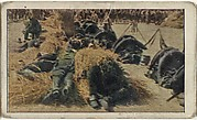 Card No. 42, French Bivouacked in Streets of Paris Ready to Go To the Front, from the World War I Scenes series (T121) issued by Sweet Caporal Cigarettes