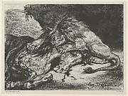 Lion Devouring a Horse