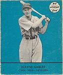 Wayne Ambler, Cincinnati Reds, Infielder, (Card #7, Blue)