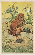 Prairie Dog, collector card from the Animal's Pictures series (D12), issued by Roulstons Bread
