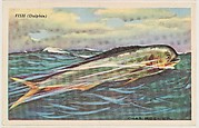 Fish (Dolphin), bakery card from the Speed Pictures series (D39-8), issued by Bell Bakeries, Inc.