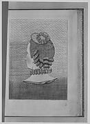 L'Art de la Coeffure des Dames Françoises...