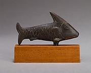 Lepidotus fish