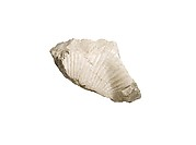 Nefertiti breast and shoulder fragment, cartouche [of Aten]