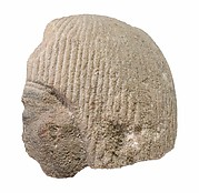 Head of official from a scene