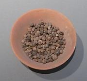 Bowl of Jujubes