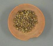 Bowl of Jujube Berries