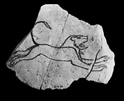 Ostracon with sketch of a running lion
