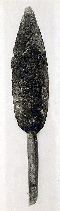 Head and part of the shaft of a spear