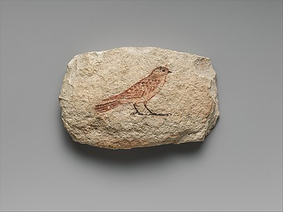 Artist's Sketch of a Swallow