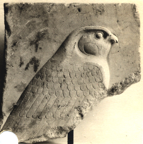 Fragmentary relief plaque with falcon