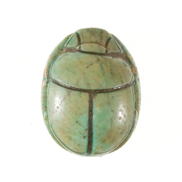 Scarab Inscribed with a Decorative Motif
