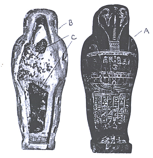 Coffin and corn mummy with Osiris mask