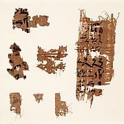 Seven papyrus fragments