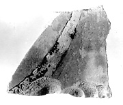 Relief fragment, tomb of Meketre