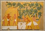 Winemaking, Tomb of Ipuy